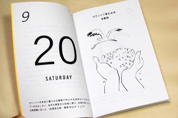 toyooka_2135 のコピー.JPG